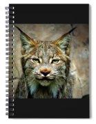Wise Bob Cat Spiral Notebook