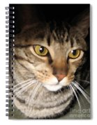 Wise Cat Spiral Notebook