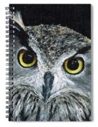 Wise Eyes II Spiral Notebook