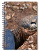 Wise Old Tortoise Spiral Notebook