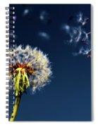 Wish Come True Spiral Notebook