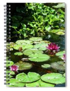 Wishes Among The Water Lilies Spiral Notebook