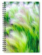 Wispy Green Spiral Notebook