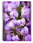 Wisteria Blossoms Spiral Notebook