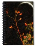 Witch Moon Spiral Notebook