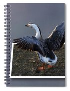 With A Nod Of The Head And A Twist Of The Tail Spiral Notebook