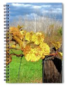 Withered Grape Vine Spiral Notebook
