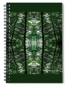Within Another Dimension  Spiral Notebook