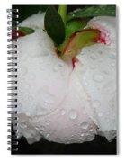 Without Umbrella Spiral Notebook