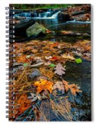 Wolf Creek Spiral Notebook