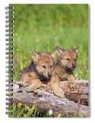 Wolf Cubs On Log Spiral Notebook
