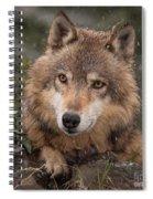 Wolf Face Spiral Notebook