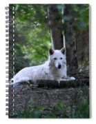 Wolf Greeting Spiral Notebook