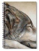 Wolf Nap Spiral Notebook