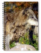Wolf On Patorl Spiral Notebook