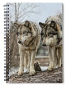 Wolf Pair Spiral Notebook