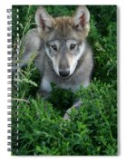 Wolf Pup Portrait Spiral Notebook
