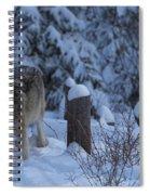 Wolf Wonderland Spiral Notebook