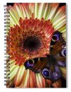Wonderful Butterfly On Daisy Spiral Notebook