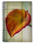 Wonderful Calla Lily Spiral Notebook