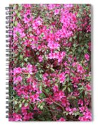 Wonderful Pink Azaleas Spiral Notebook