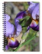 Wonderful Purple Irises Spiral Notebook