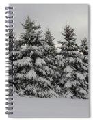 Wonderful Winter Spiral Notebook