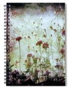 Wonderland Spiral Notebook