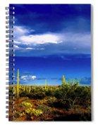 Wonderment Spiral Notebook