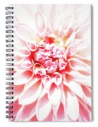 Wont To Love Spiral Notebook
