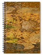 Wood Abstracted Spiral Notebook
