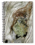 Wood And Stone, Cumbria, England Spiral Notebook