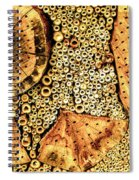 Insect Hotel #2 Spiral Notebook