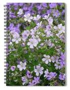 Wood Cranesbill Field Spiral Notebook