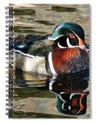 Wood Duck 1 Spiral Notebook
