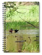 Wood Duck Mates Spiral Notebook