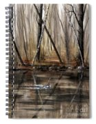 Wood Duck On Pond Spiral Notebook