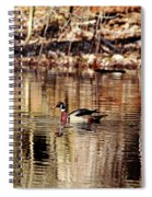 Wood Ducks Enjoying The Pond Spiral Notebook