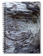 Wood Grain Of Buena Vista  Spiral Notebook