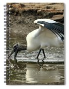 Wood Stork Fishing Spiral Notebook