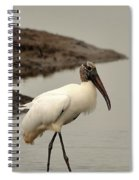 Wood Stork Walking Spiral Notebook
