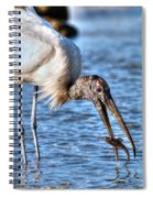 Wood Storks Breakfast Lunch And Dinner Spiral Notebook