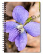 Wood Violet - Full View Spiral Notebook
