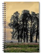 Woodburn Oregon - Sky Lights Spiral Notebook
