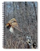 Woodcock Flight Ascension Spiral Notebook