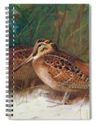 Woodcock In The Undergrowth Spiral Notebook