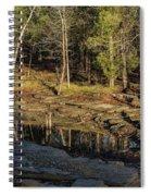 Wooded Backwash Spiral Notebook