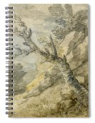 Wooded Landscape With Rocks And Tree Stump Spiral Notebook
