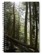 Wooded Serenity Spiral Notebook