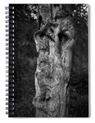 Wooden Face 2 Spiral Notebook